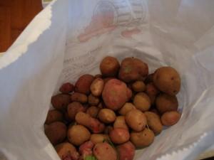 Potato-Leek Breakfast Casserole -- Epicurean Vegan