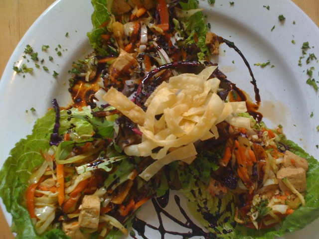 Asian Lettuce Wraps, Tasty Harmony in Fort Collins, CO