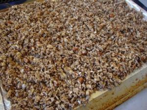 Chocolate-Espresso Balsamic Granola -- Epicurean Vegan