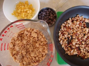 No Bake Roasted Nut and Mango Energy Bars, Backpacking Made (Vegan) Easy -- Epicurean Vegan