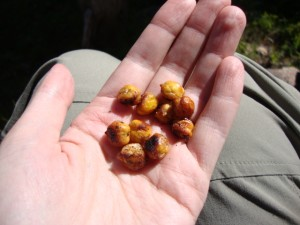 Lime and Black Pepper Roasted Chickpeas, Backpacking Made (Vegan) Easy -- Epicurean Vegan